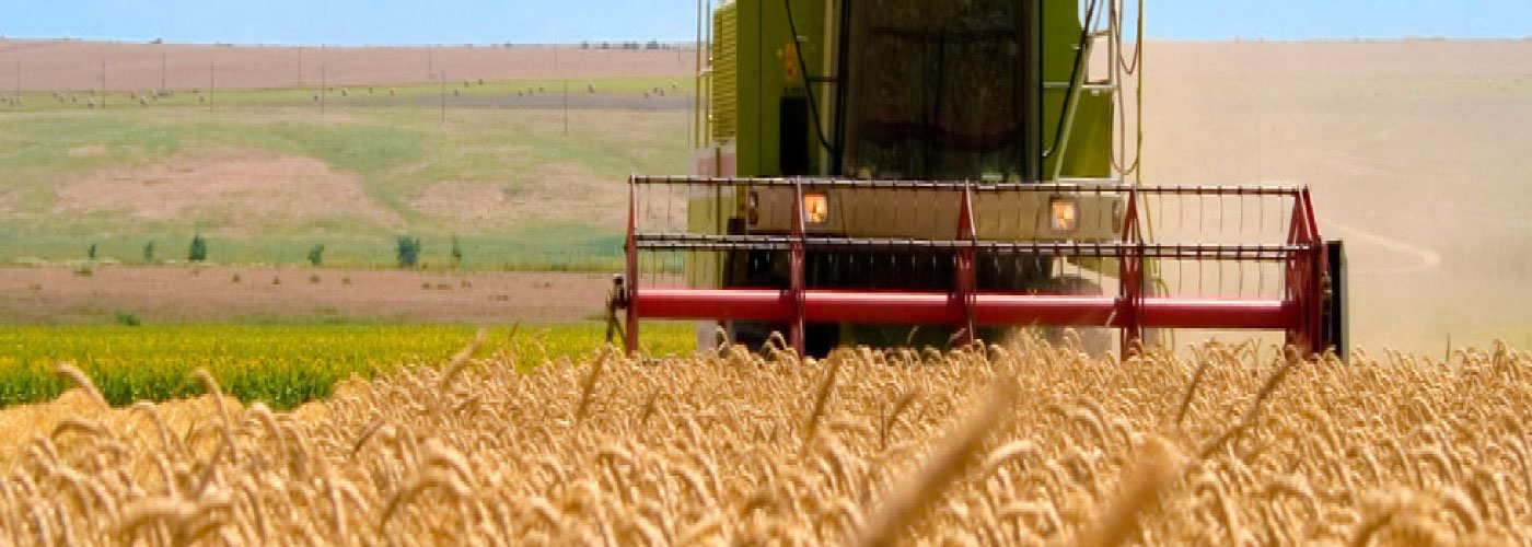 Poľnoprodukty